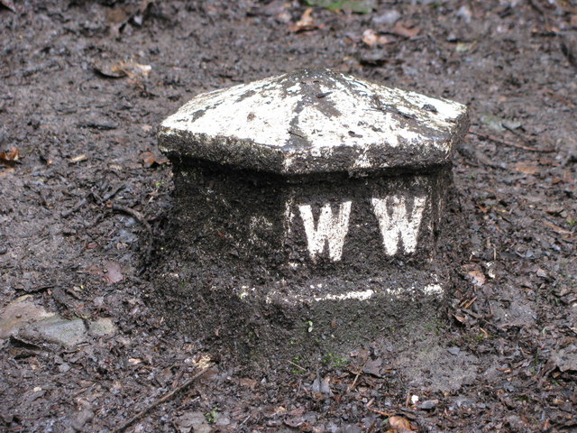 Mystery Cast Iron Marker - geograph.org.uk - 1401007