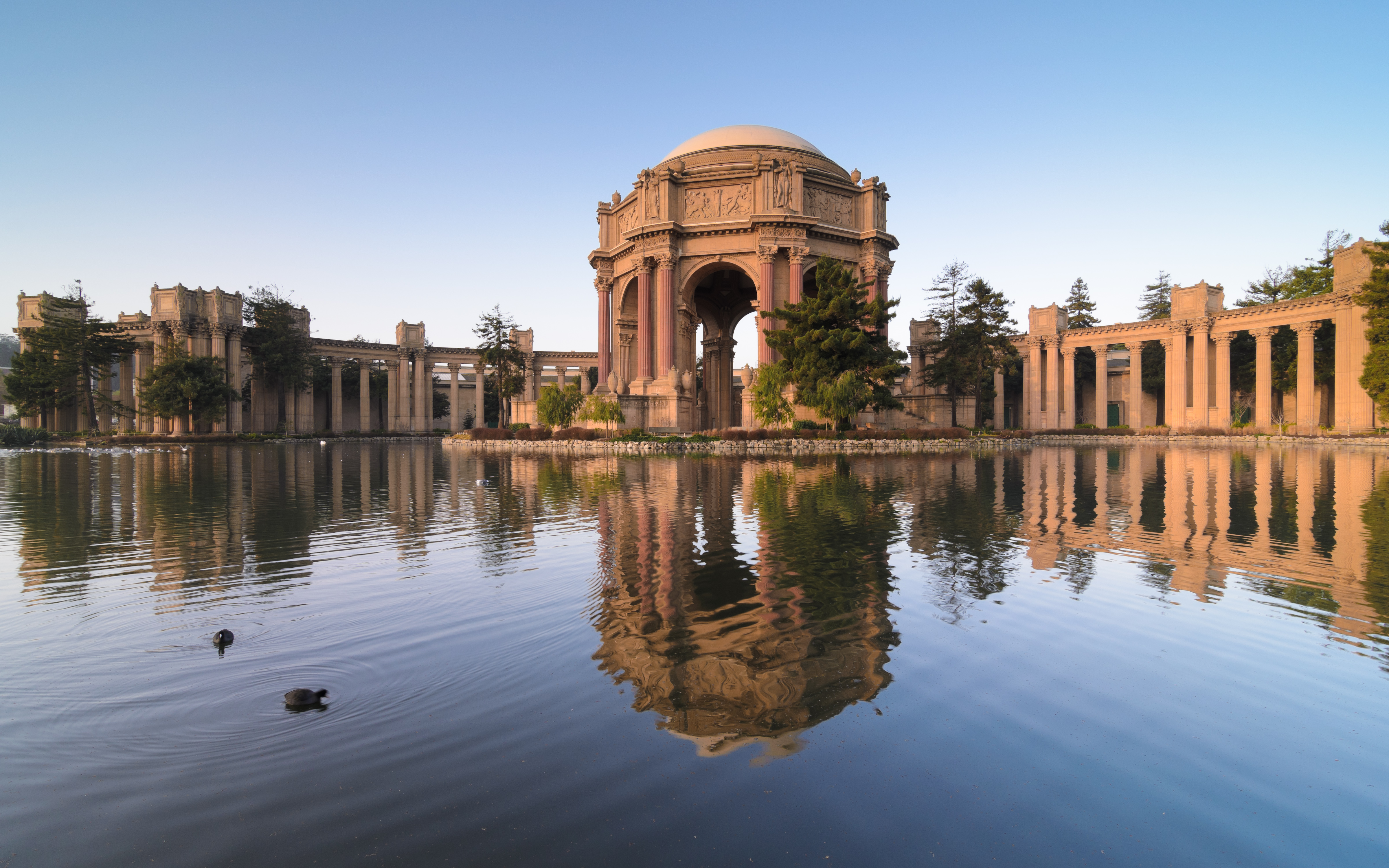 Palace Of Fine Arts San Francisco California 4800 215 3000