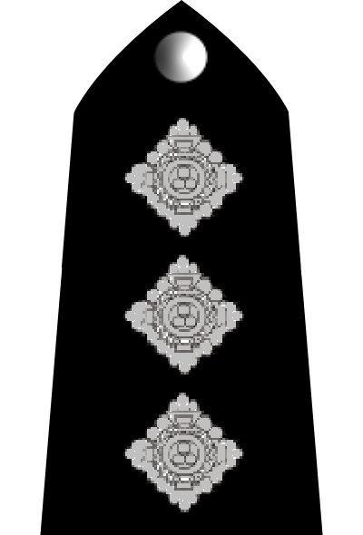 British Police Rank Insignia http://en.wikipedia.org/wiki/File:Uk-police-04.PNG