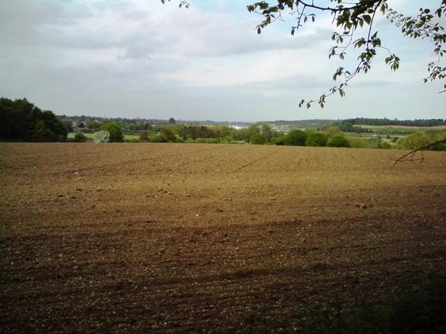 View toward Woodbridge - geograph.org.uk - 1295182
