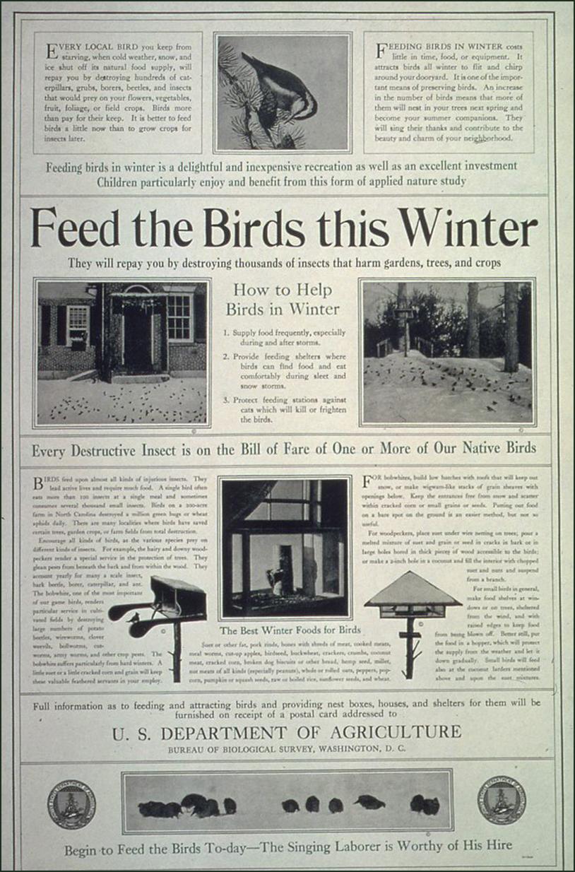 "File ""Feed The Birds This Winter "" ca 1917 ca 1919 NARA"