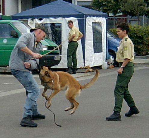 Er sucht sie mit hund