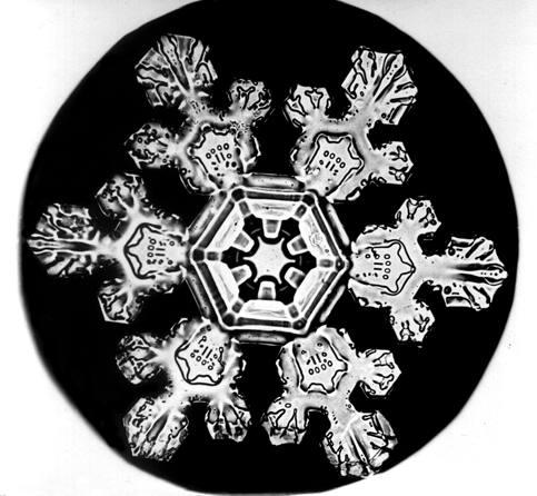http://upload.wikimedia.org/wikipedia/commons/0/0d/Bentley_Snowflake11.jpg