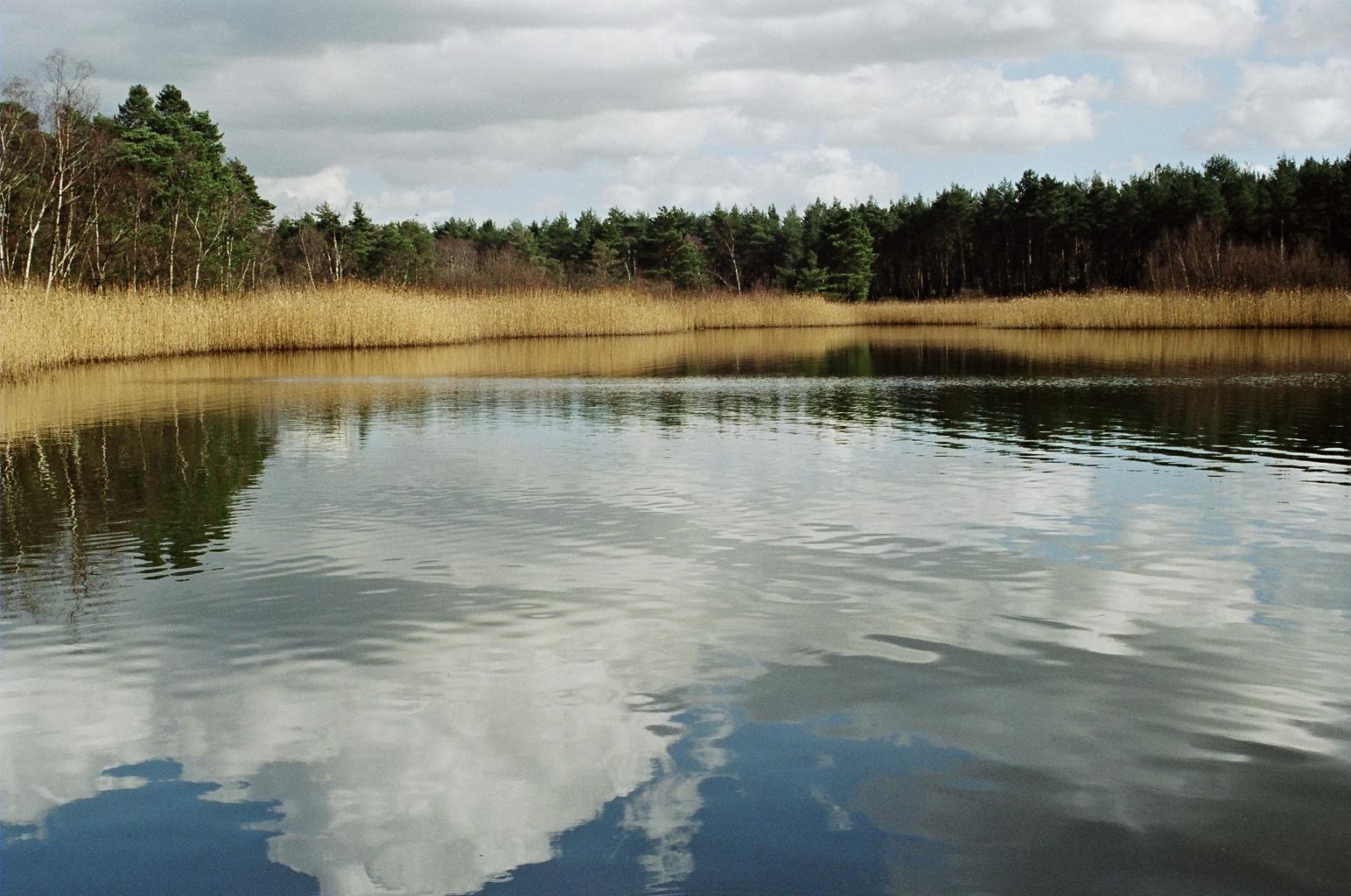 Inspirational Synonym for Pond