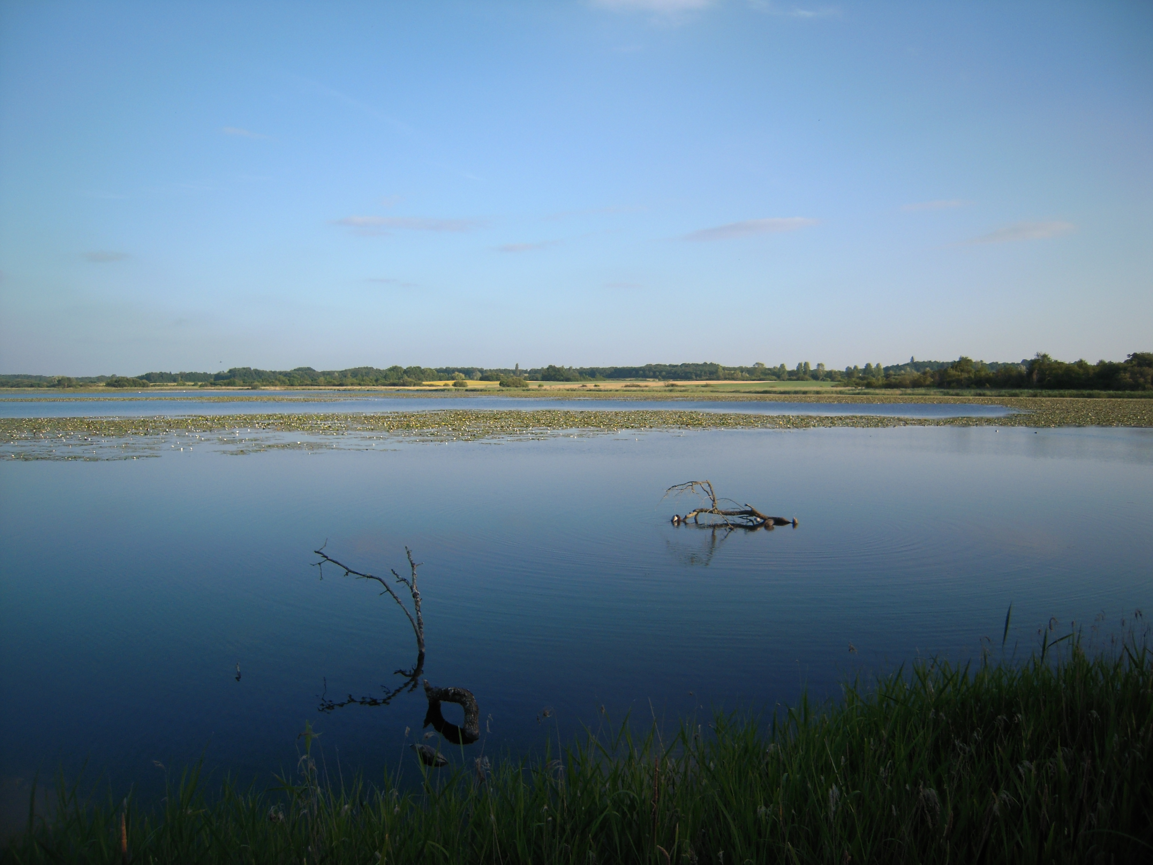Image result for parc naturel regional de la brenne