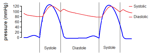 Cardiac cycle pressure only