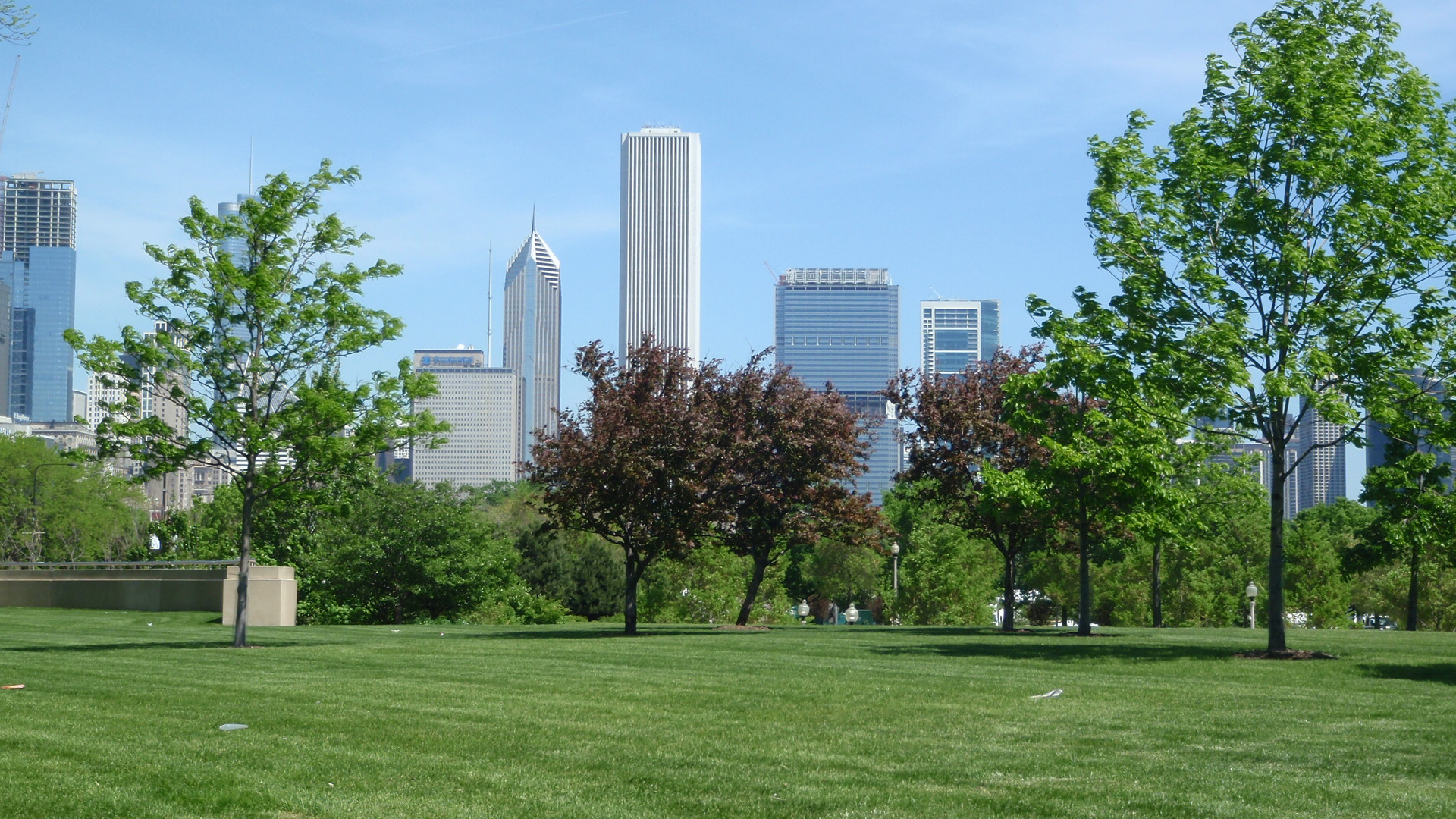 FileChicago City Views Summer 2009 Raed Elaydi 20JPG