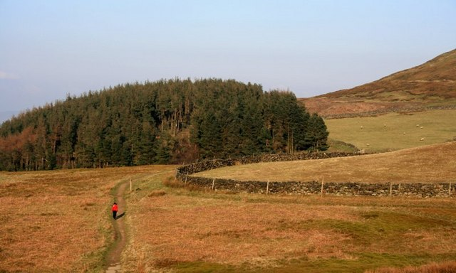 Col Between Cringle and Cold Moors - geograph.org.uk - 377341