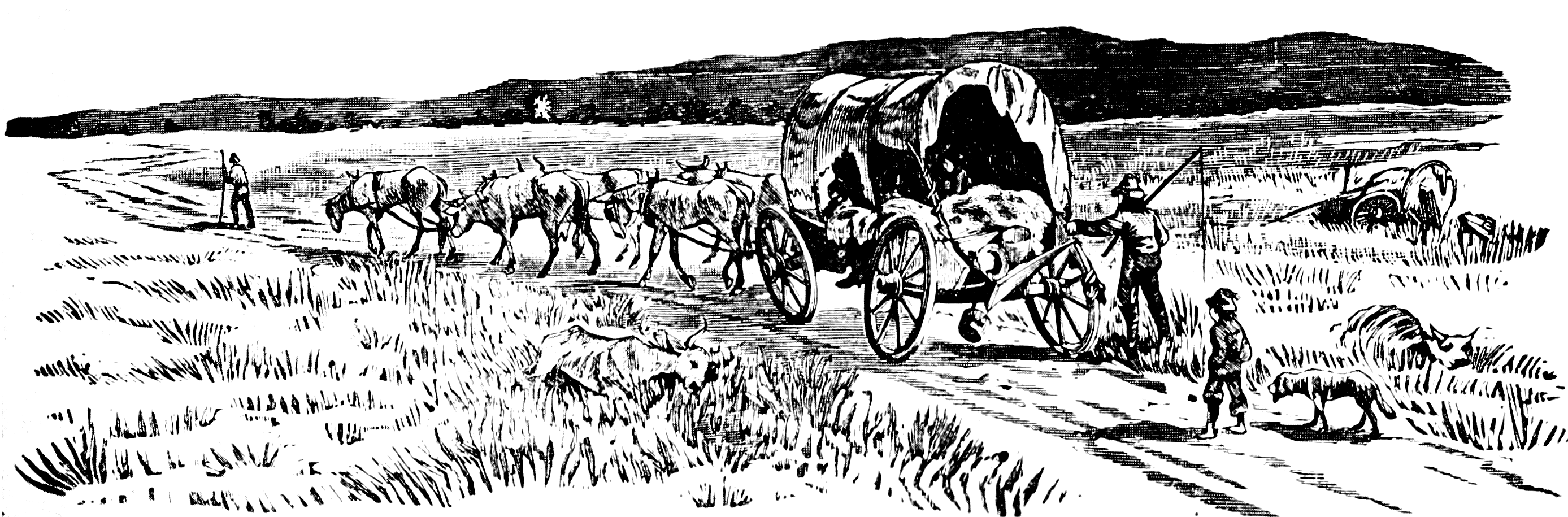Covered Wagon on Trail sketch.png