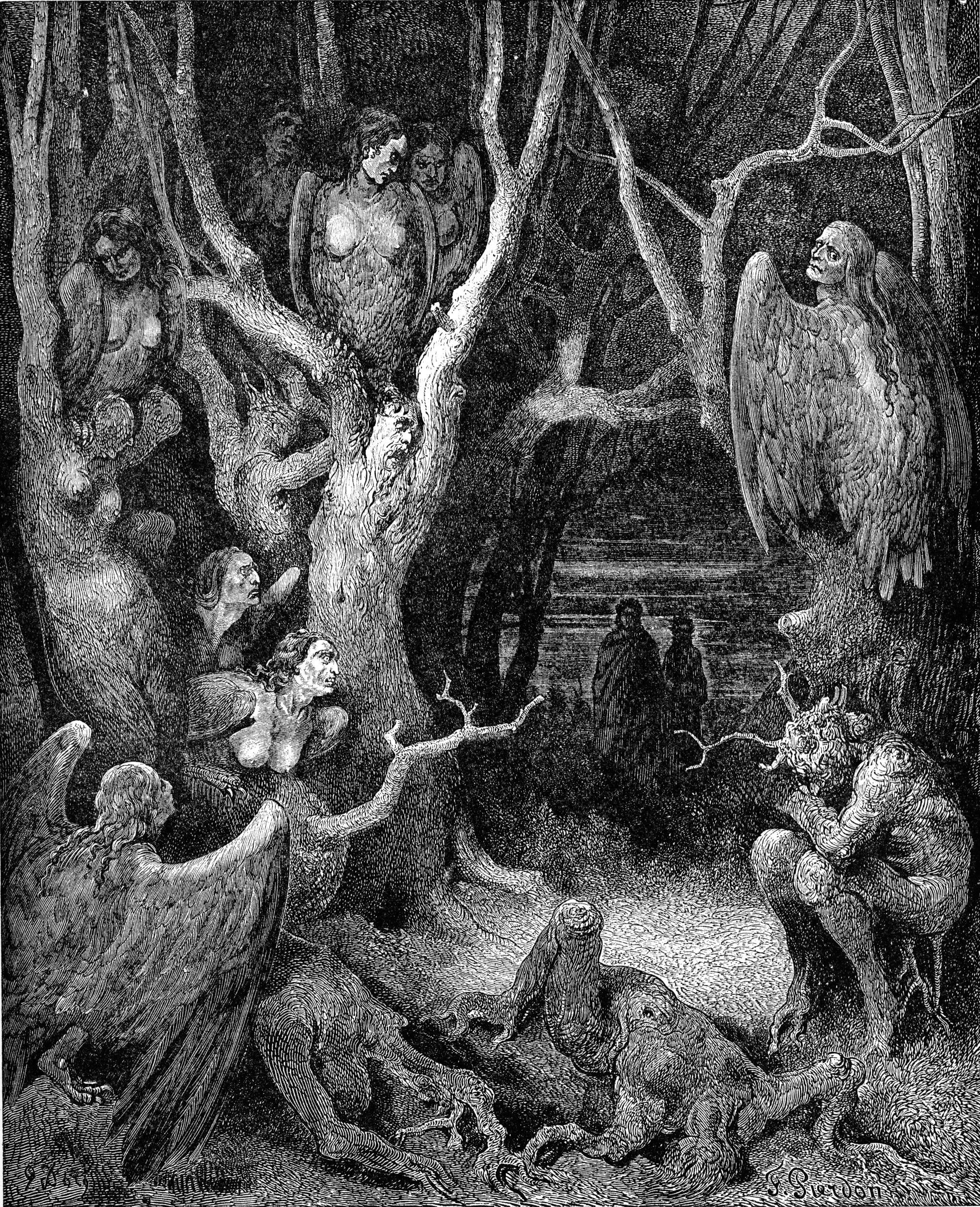 The Wood of the Self-Murderers: The Harpies and the Suicides