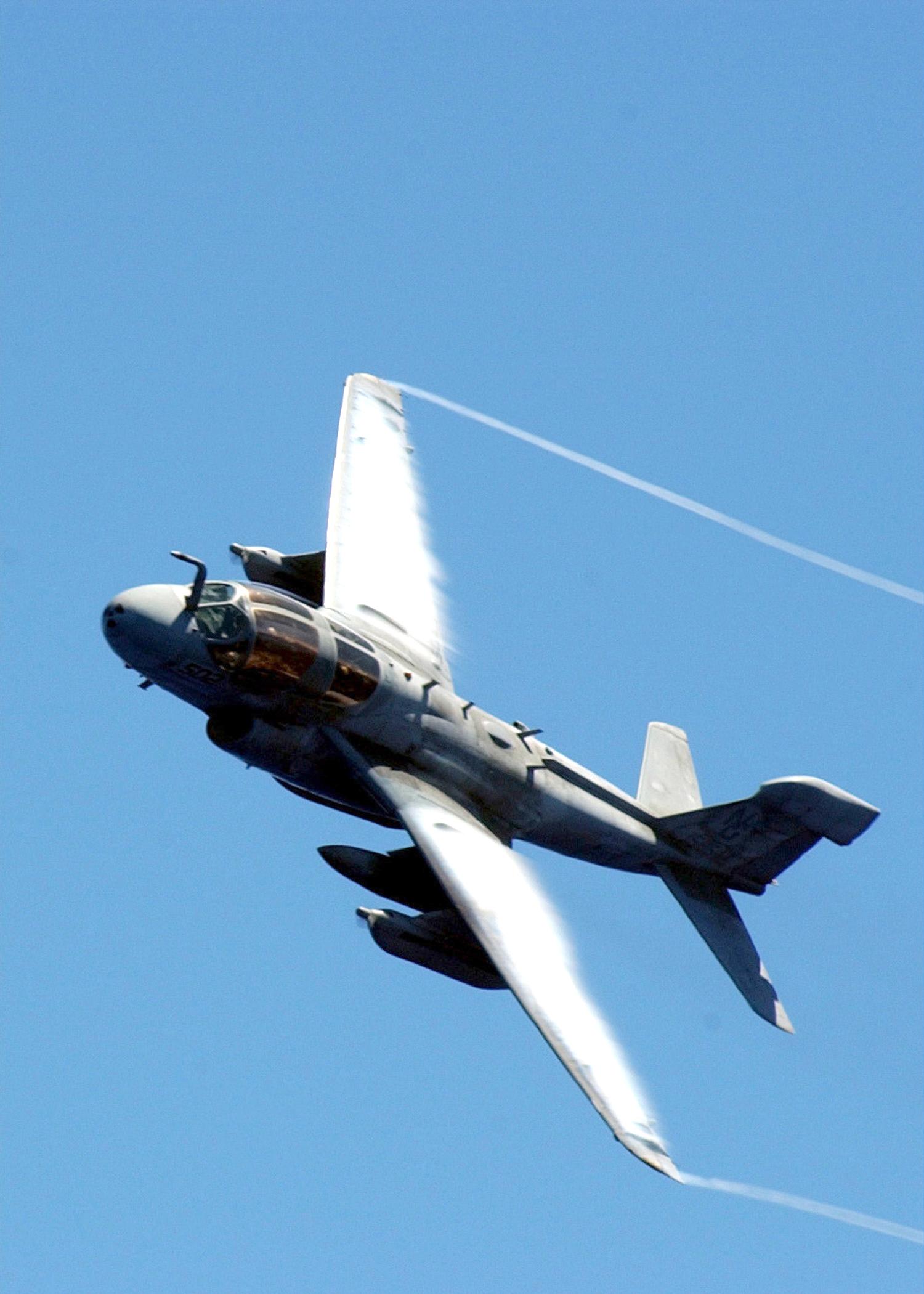 EA-6B_Prowler_from_VAQ-138.jpg