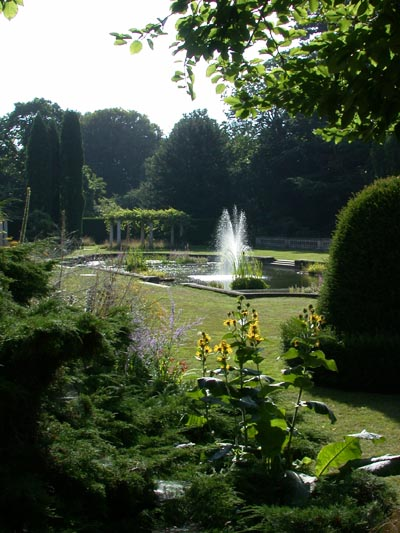 Gardens at The Lodge - geograph.org.uk - 66876