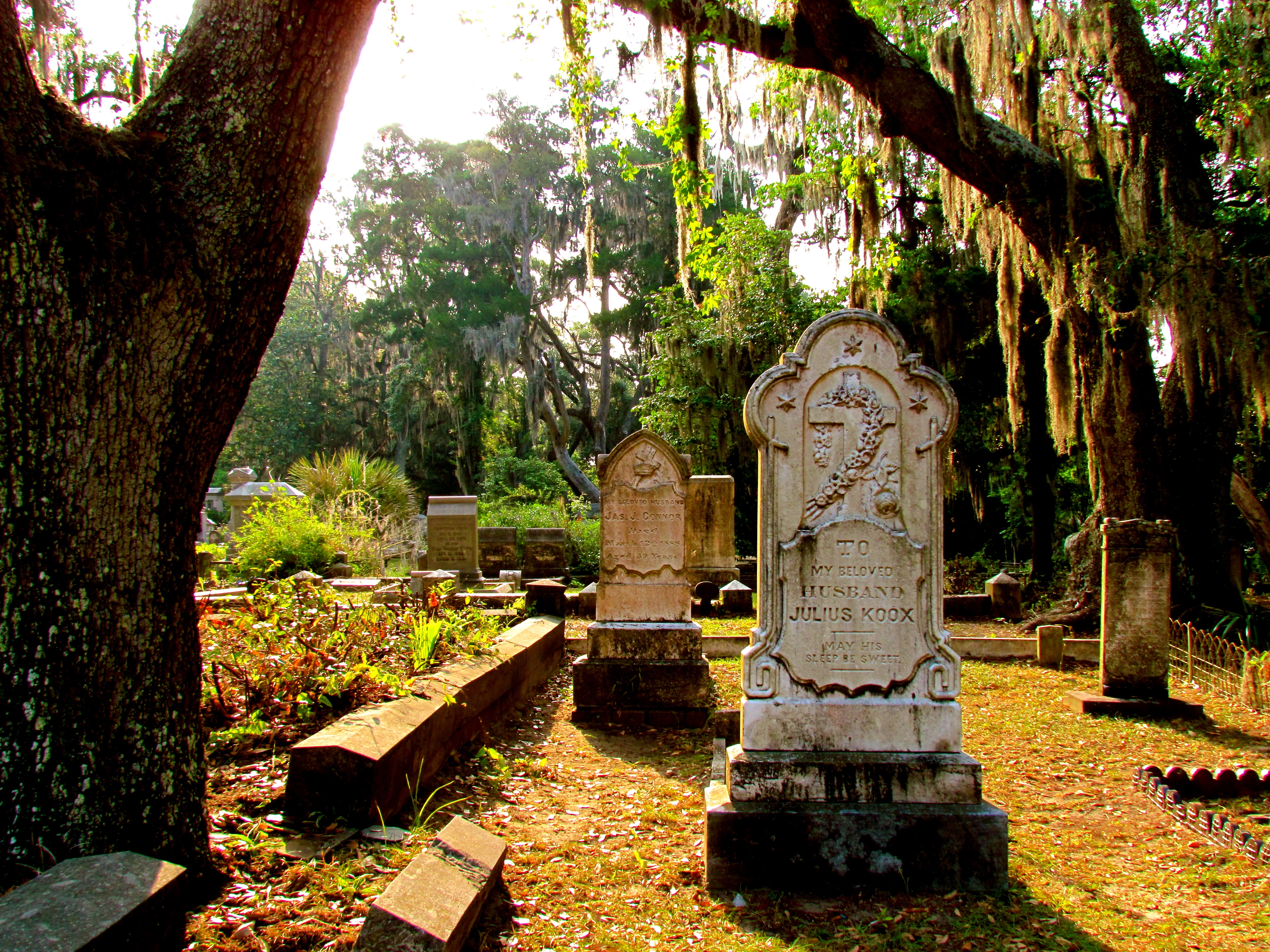 Savannah (GA) United States  City new picture : Graves in Camellia Terrace, Savannah, Georgia, United States