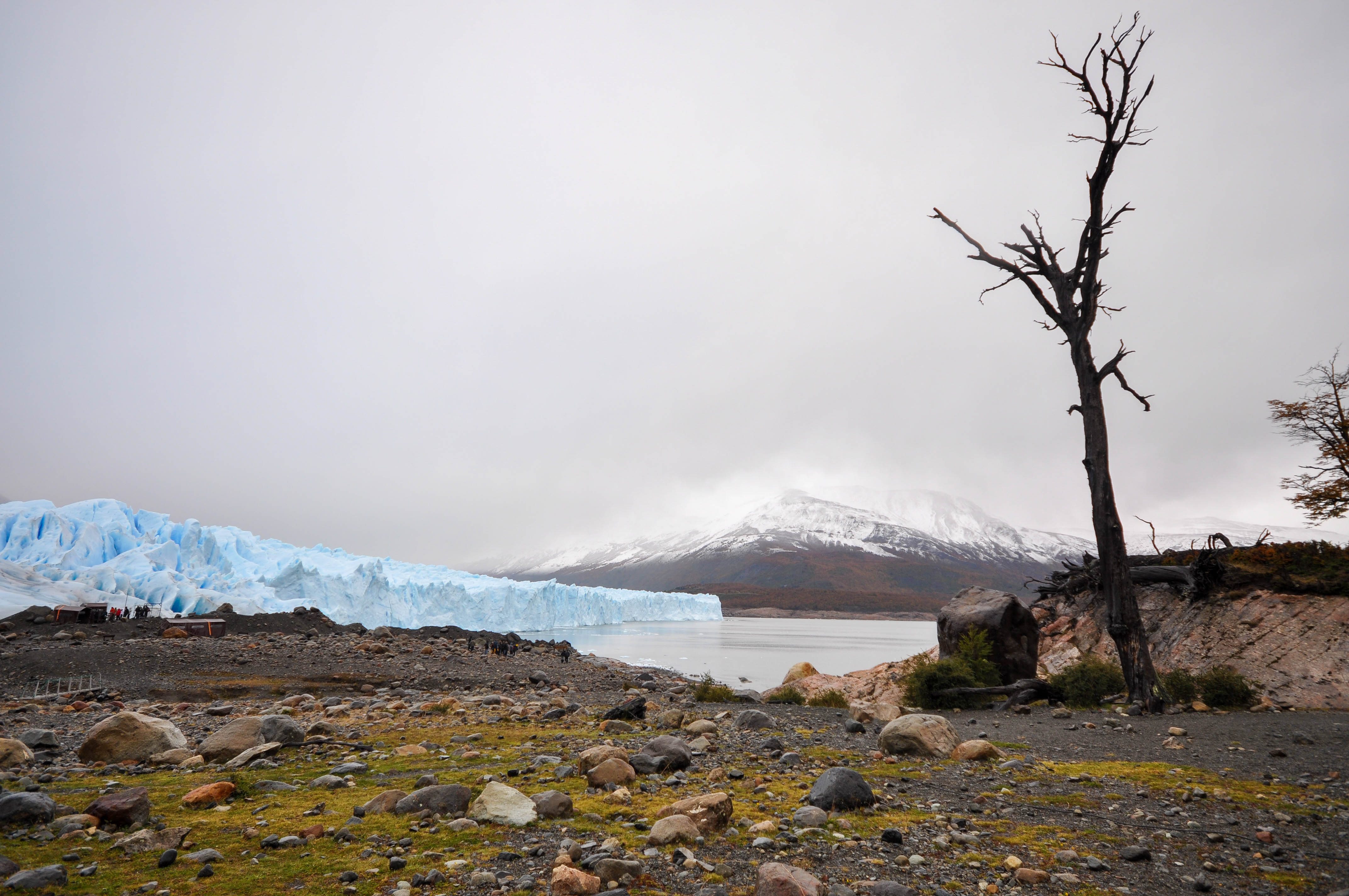 Argentine side of the range. This area is habitat for ñandúes, guanaco, cougar, and gray fox, the latter who has suffered from the invasion of the cattle