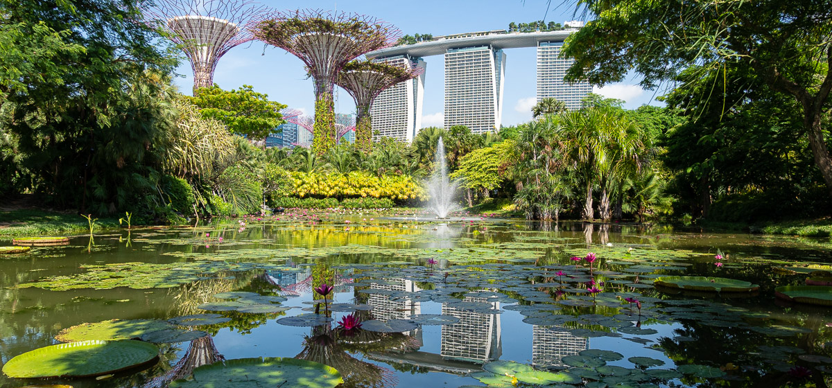 Gardens by the Bay , Wikipedia