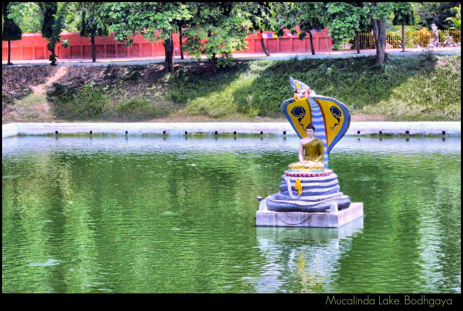 Heavenly Bodh Gaya: The Land Of Inner Purification In 2020 5