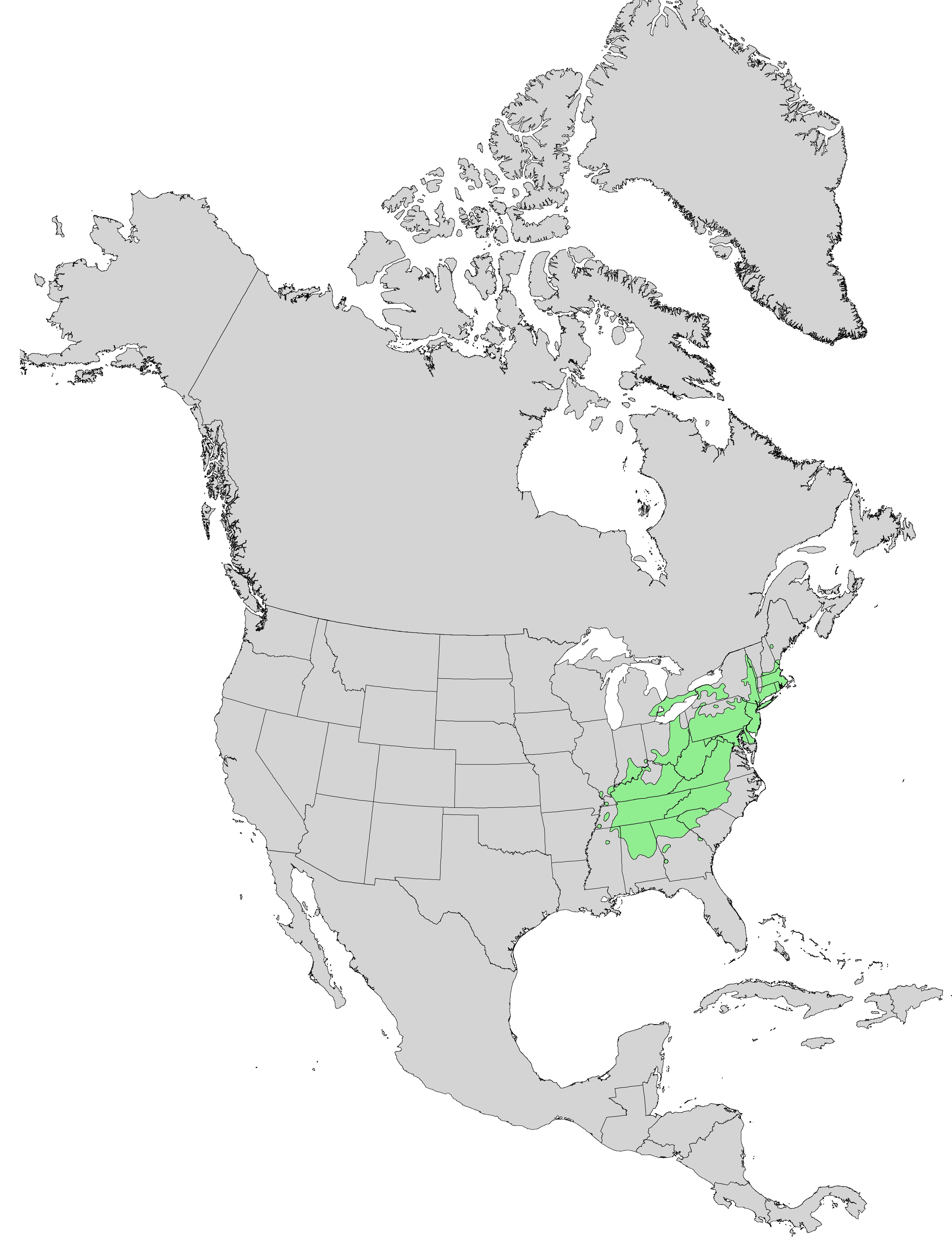 File Quercus montana range map 0 Wikimedia mons
