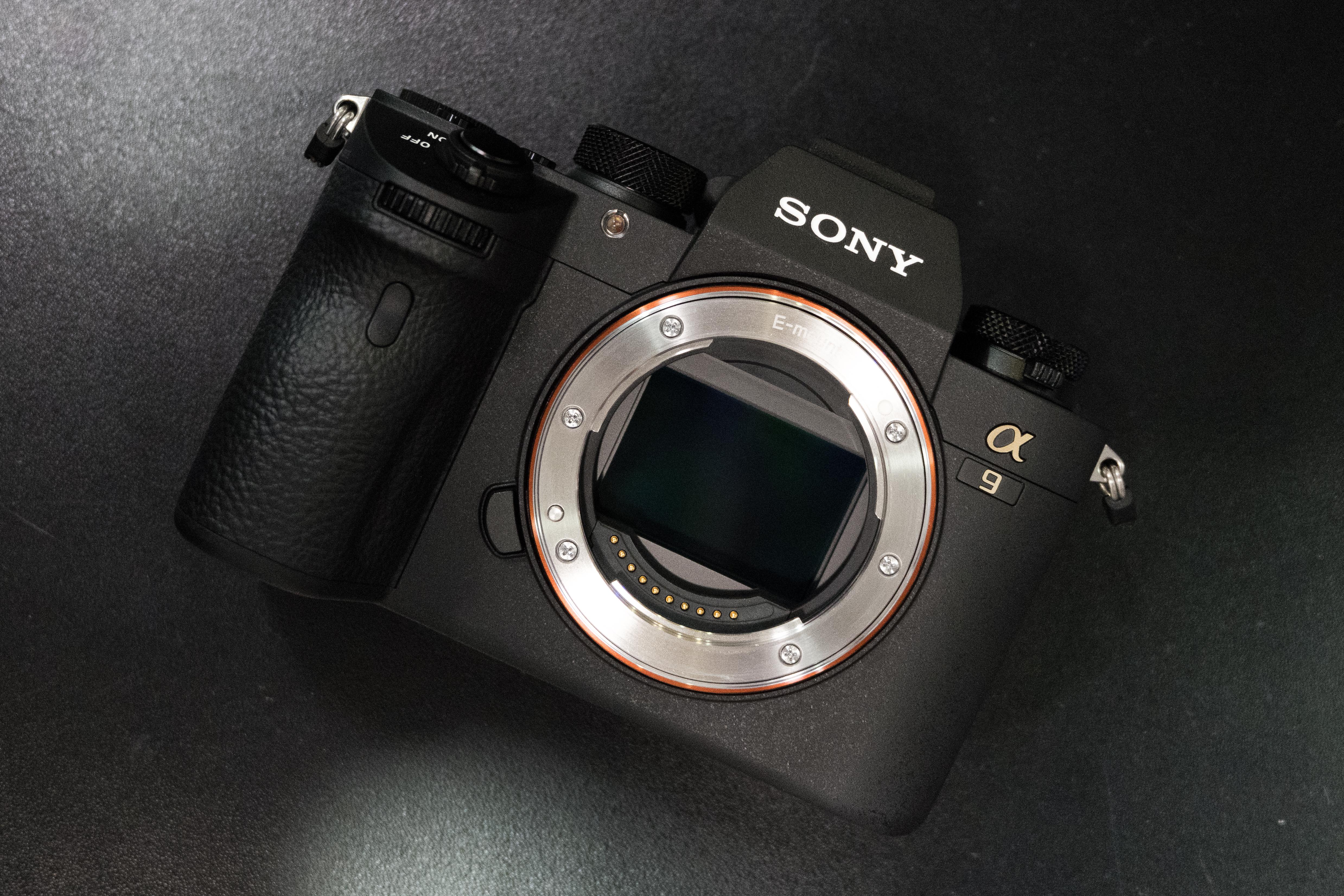 Sony Alpha A9 DSCF0221 %