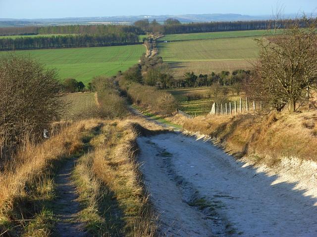 The Ridgeway, Whitehorse Hill - geograph.org.uk - 647230