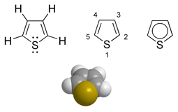 Thiophene chemical structure.png