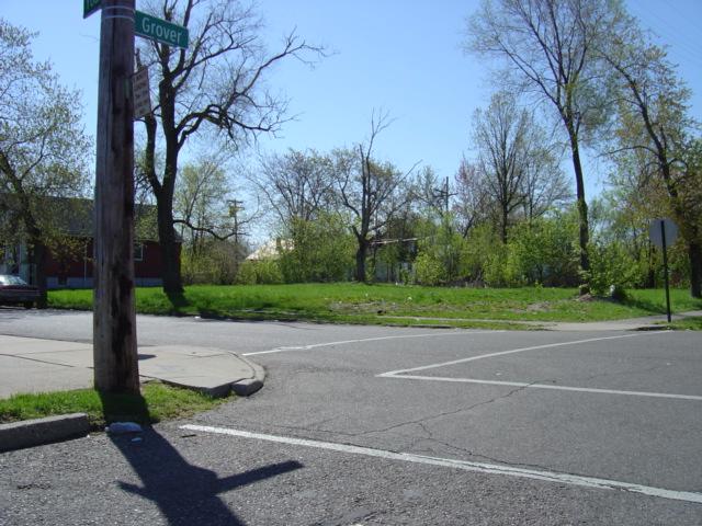 Urban prairie Detroit 2