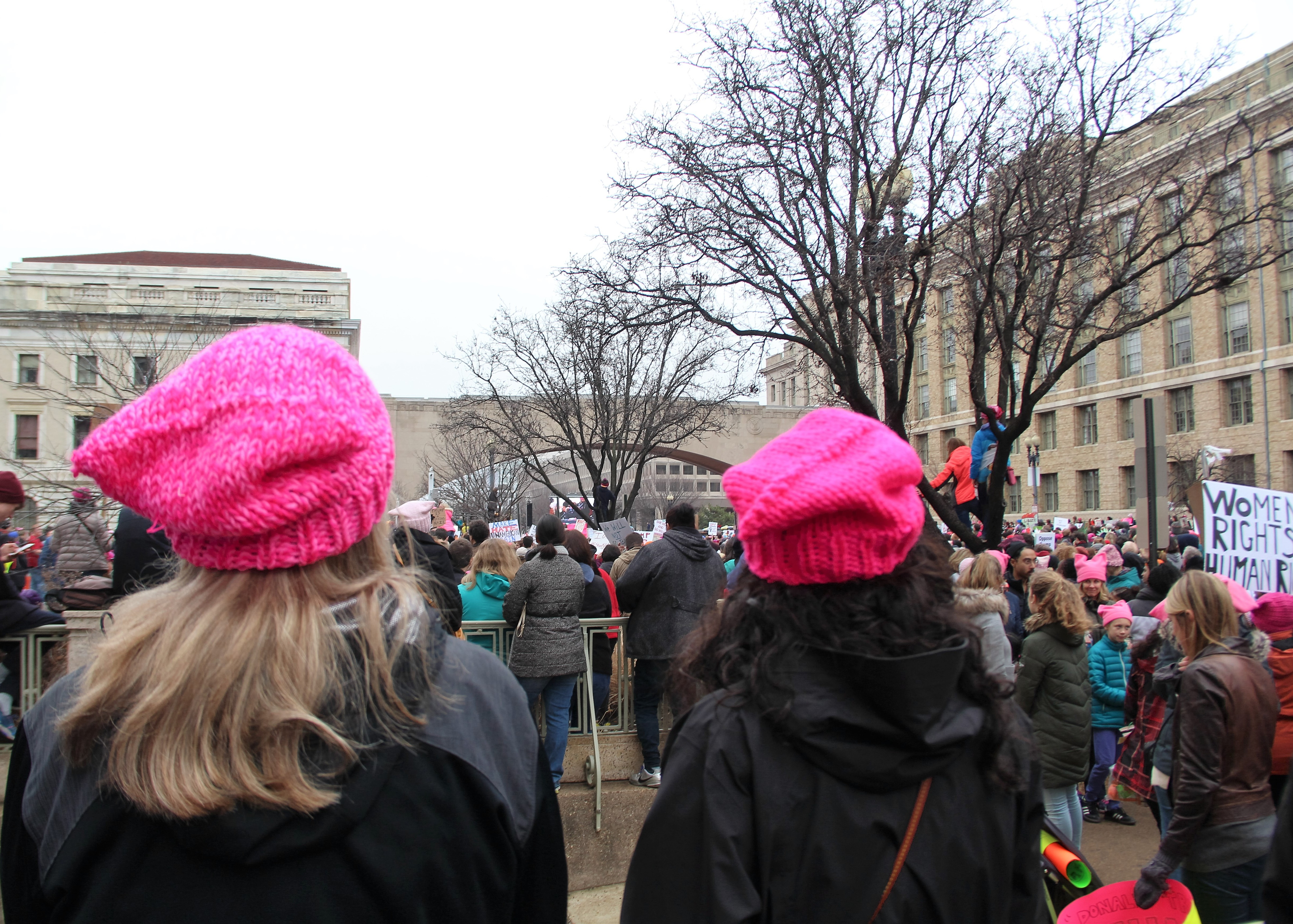 8c2eadedf2c File Women s March on Washington - two women with pussyhat.jpg. From Wikimedia  Commons ...