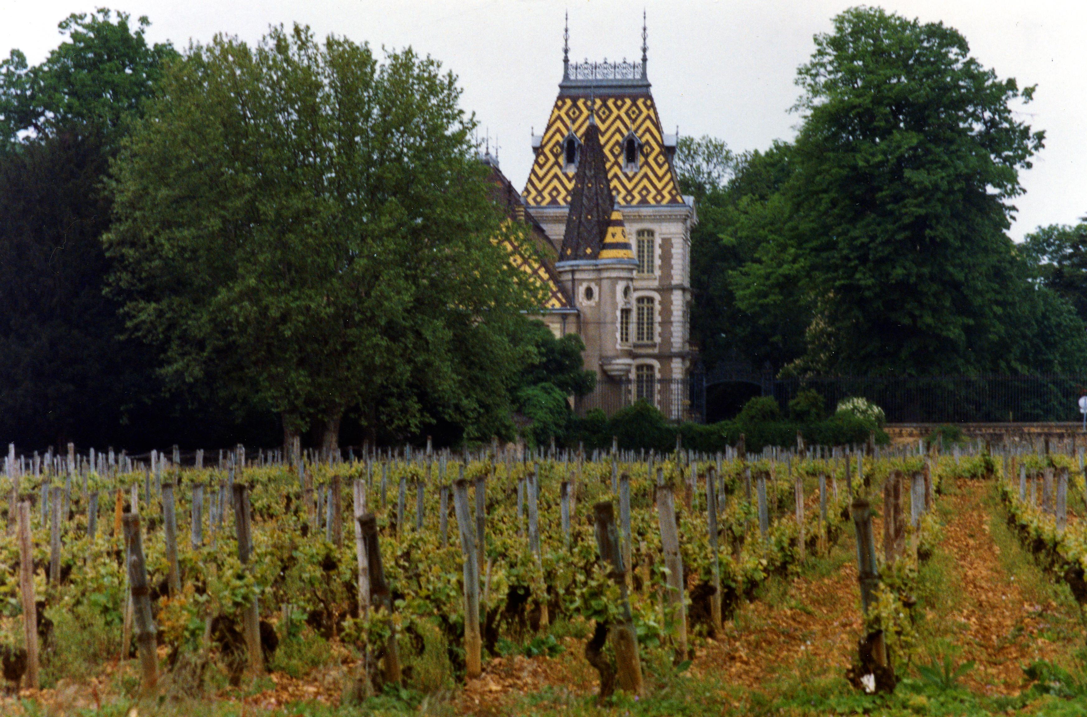 Domaine viticole et Château Corton André