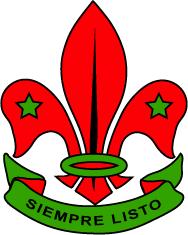 Asociación de Scouts de México, Asociación Civil