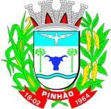 Pinhão Paraná fonte: upload.wikimedia.org