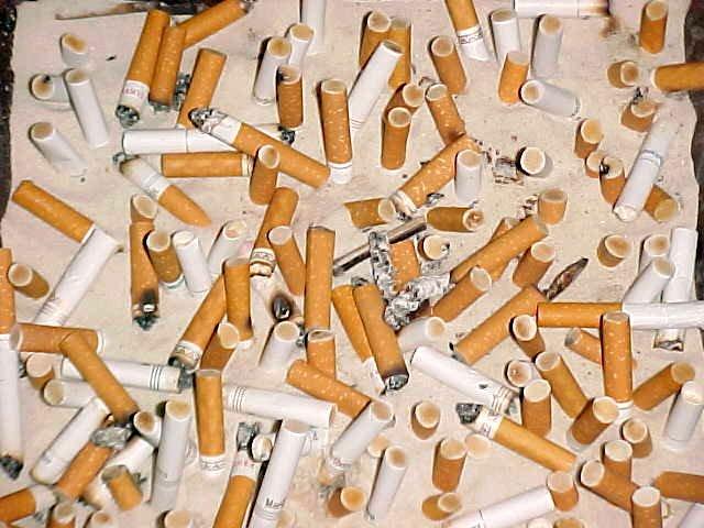 premier cigarette tobacco menthol