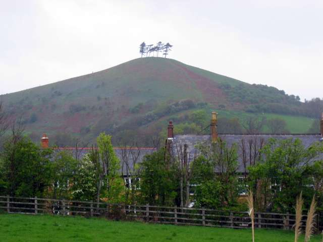Colmer's Hill - geograph.org.uk - 396055