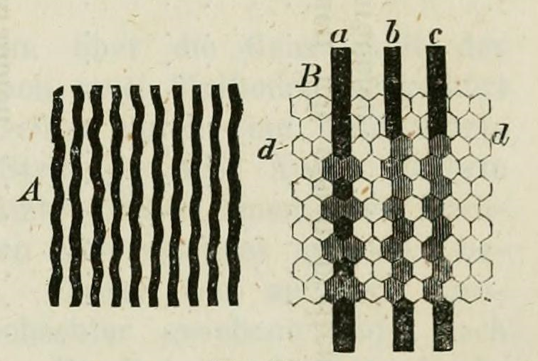 File:Drawing of perceived aliasing patterns by Helmholtz.png