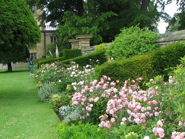 Hardwick Hall - Rose Garden - geograph.org.uk - 1503706