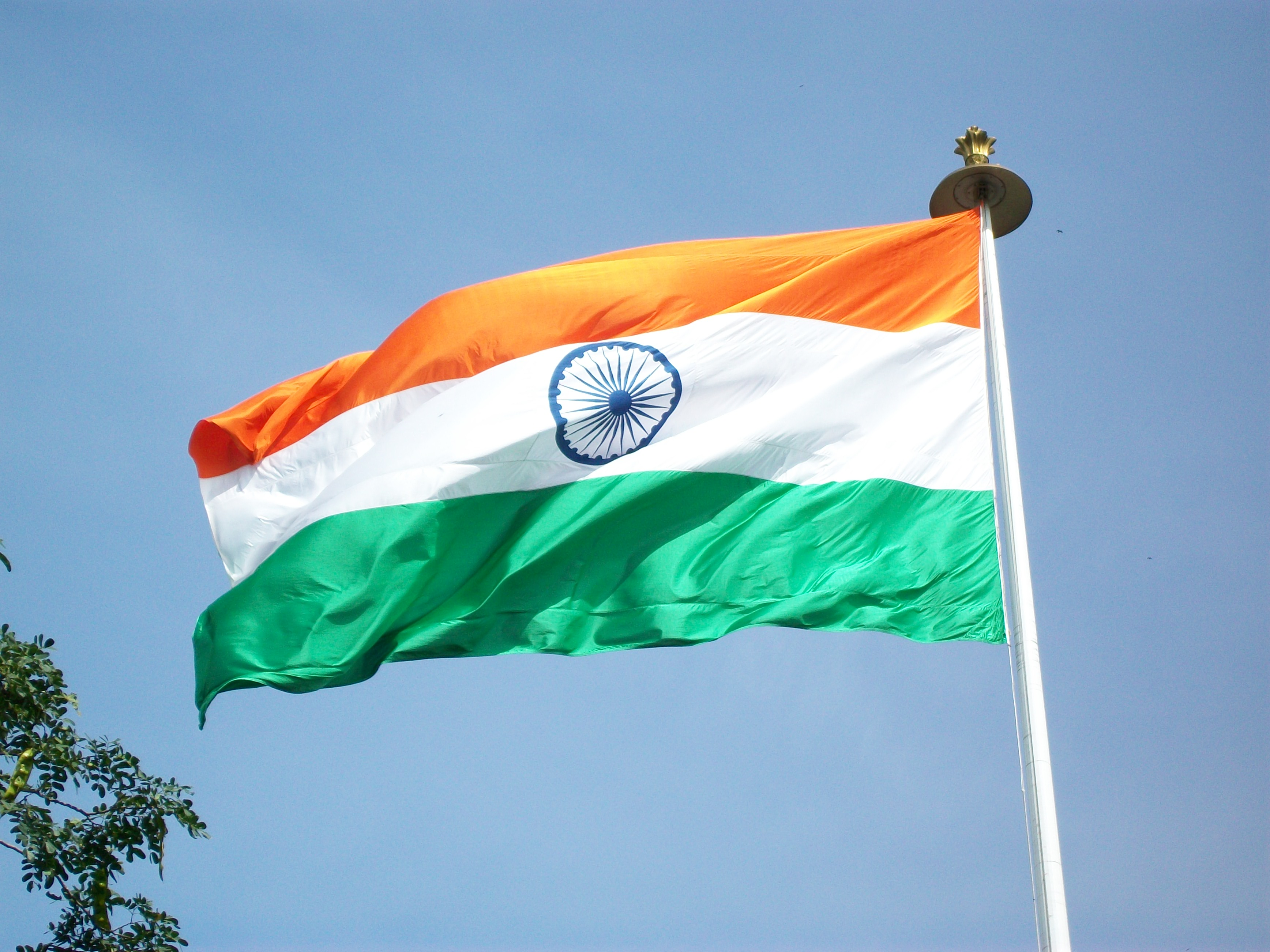 India Flag Wallpaper Biography