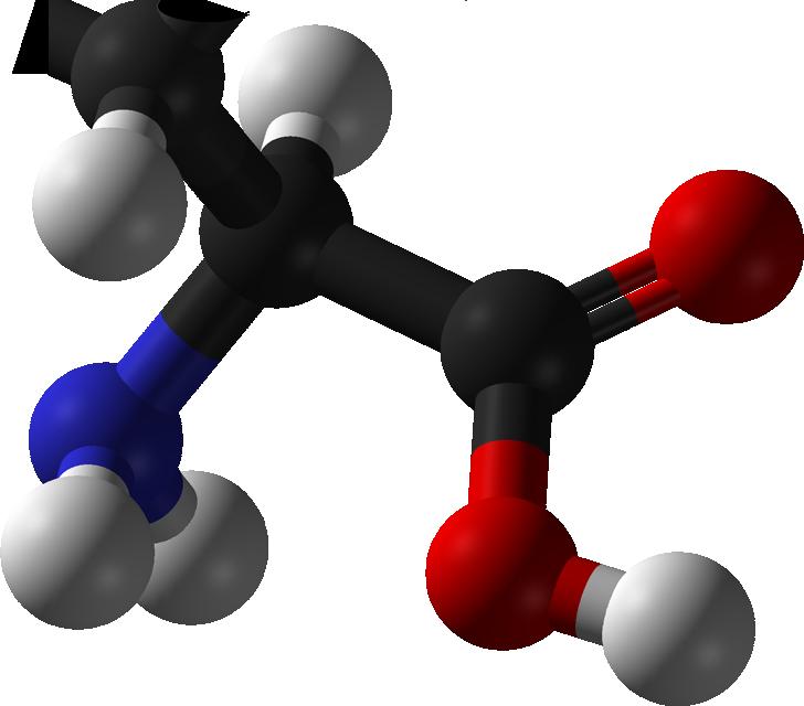 Definition of Amino-acid dating at