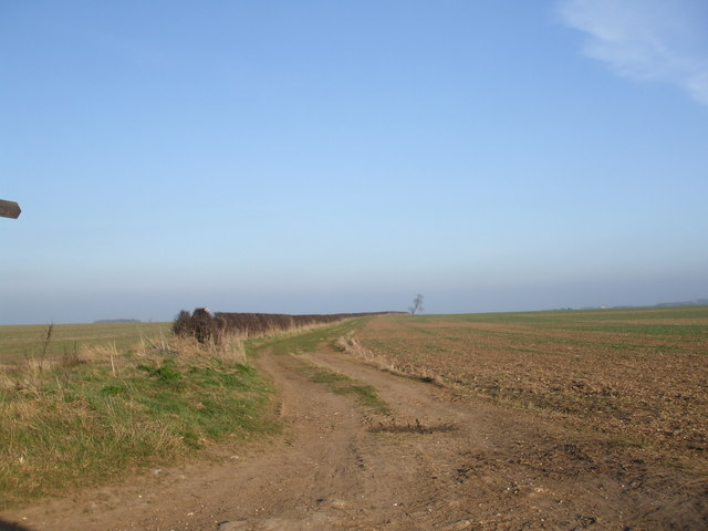 Part of the High Hunsley Circuit - geograph.org.uk - 1227267