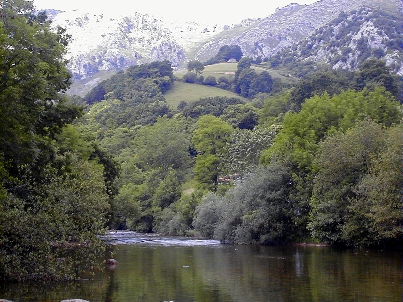 Río Asón a su paso por Arredondo