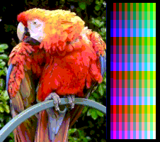 Screen Color Test MSX2 Screen8