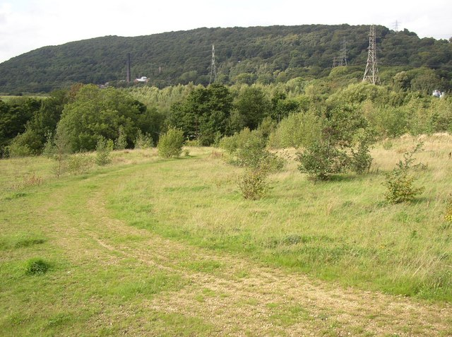 Track across the Cromwell Bottom Nature Reserve, Elland (1) - geograph.org.uk - 250145