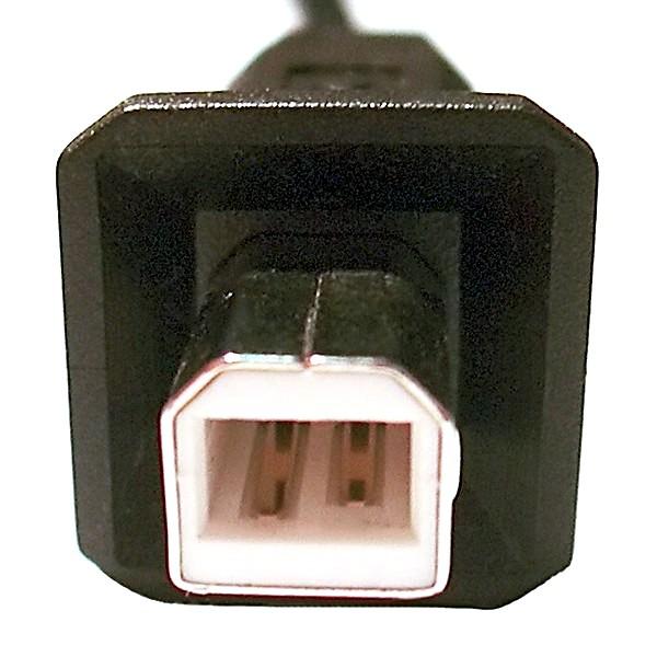 USB Male Stecker Type B