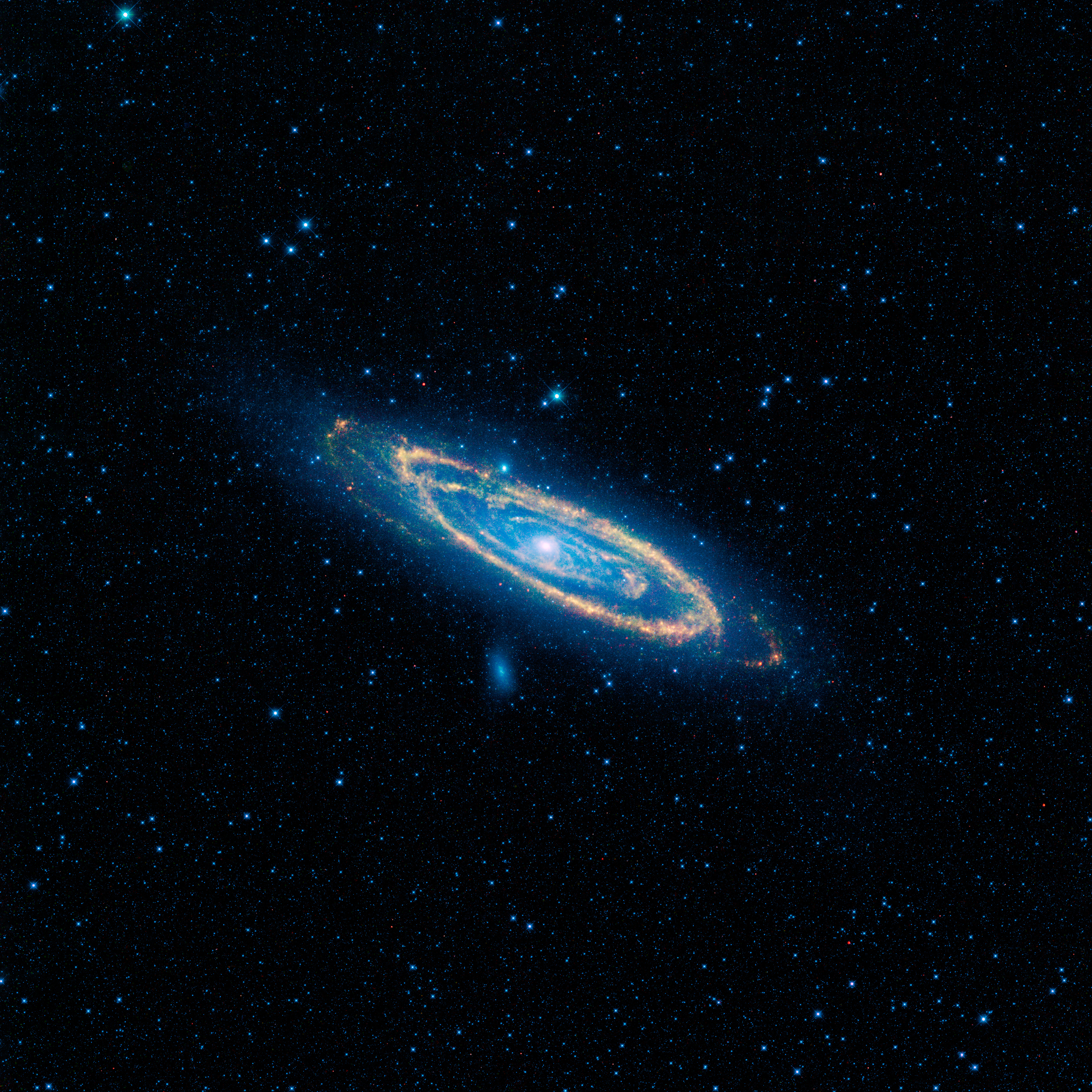 The Andromeda galaxy (M31) in full in this new image from NASA's WISE.
