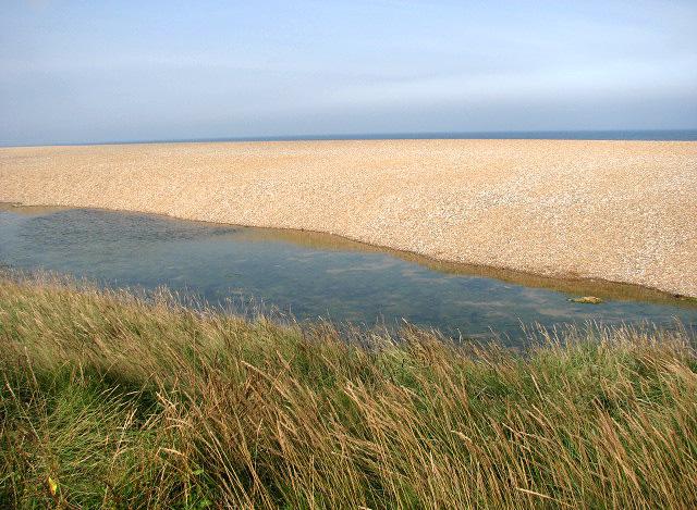 Where marsh meets beach - geograph.org.uk - 980903
