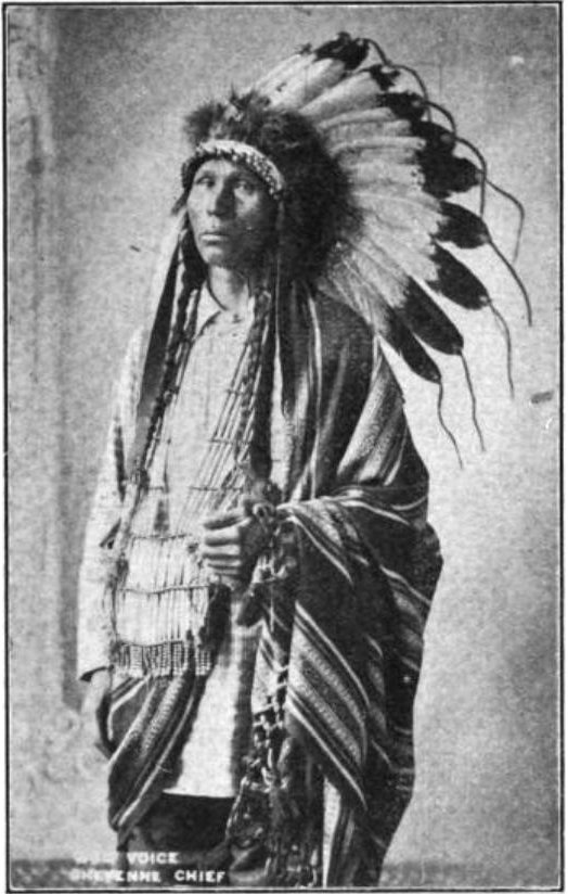 indian chief and wolf - photo #17