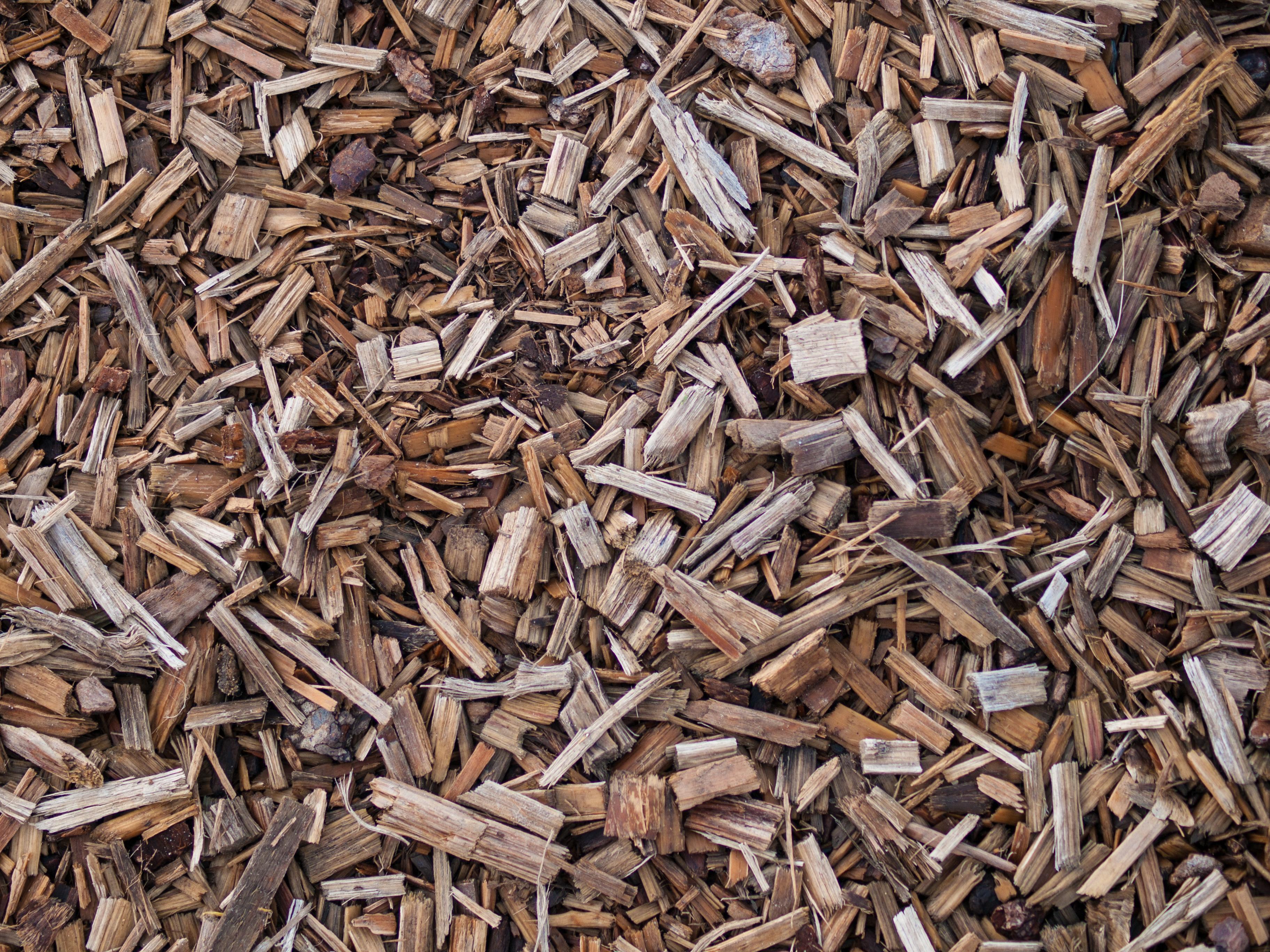 Fine Wood Chipper