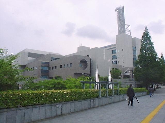 Yokohamatsuzukiku