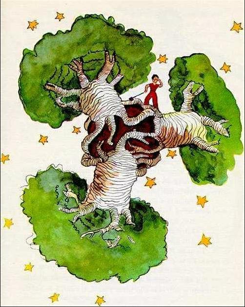 ציור מתוך הספר הנסיך הקטן.jpg