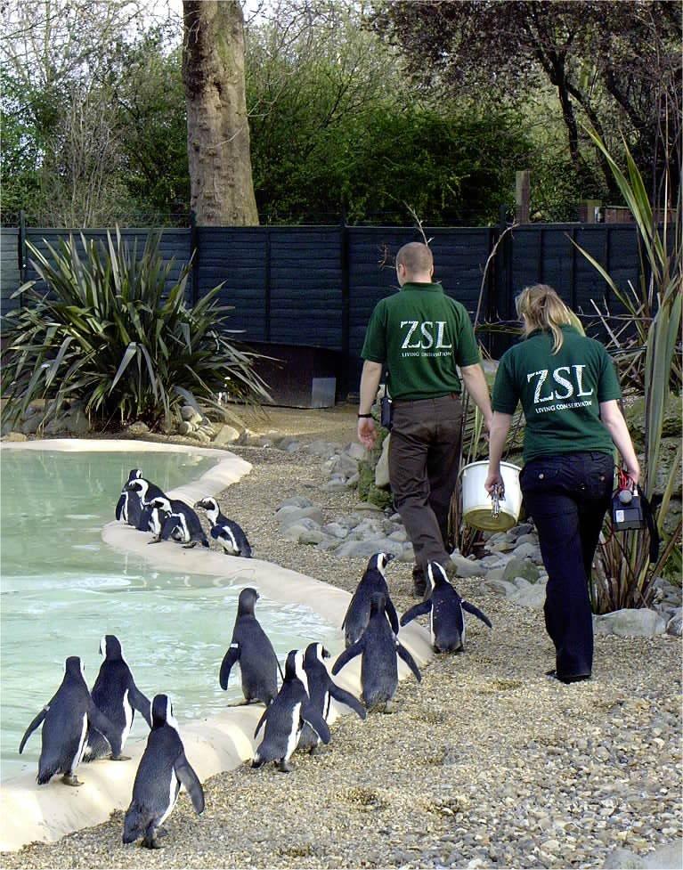 04-01-05 London Zoo 148.JPG