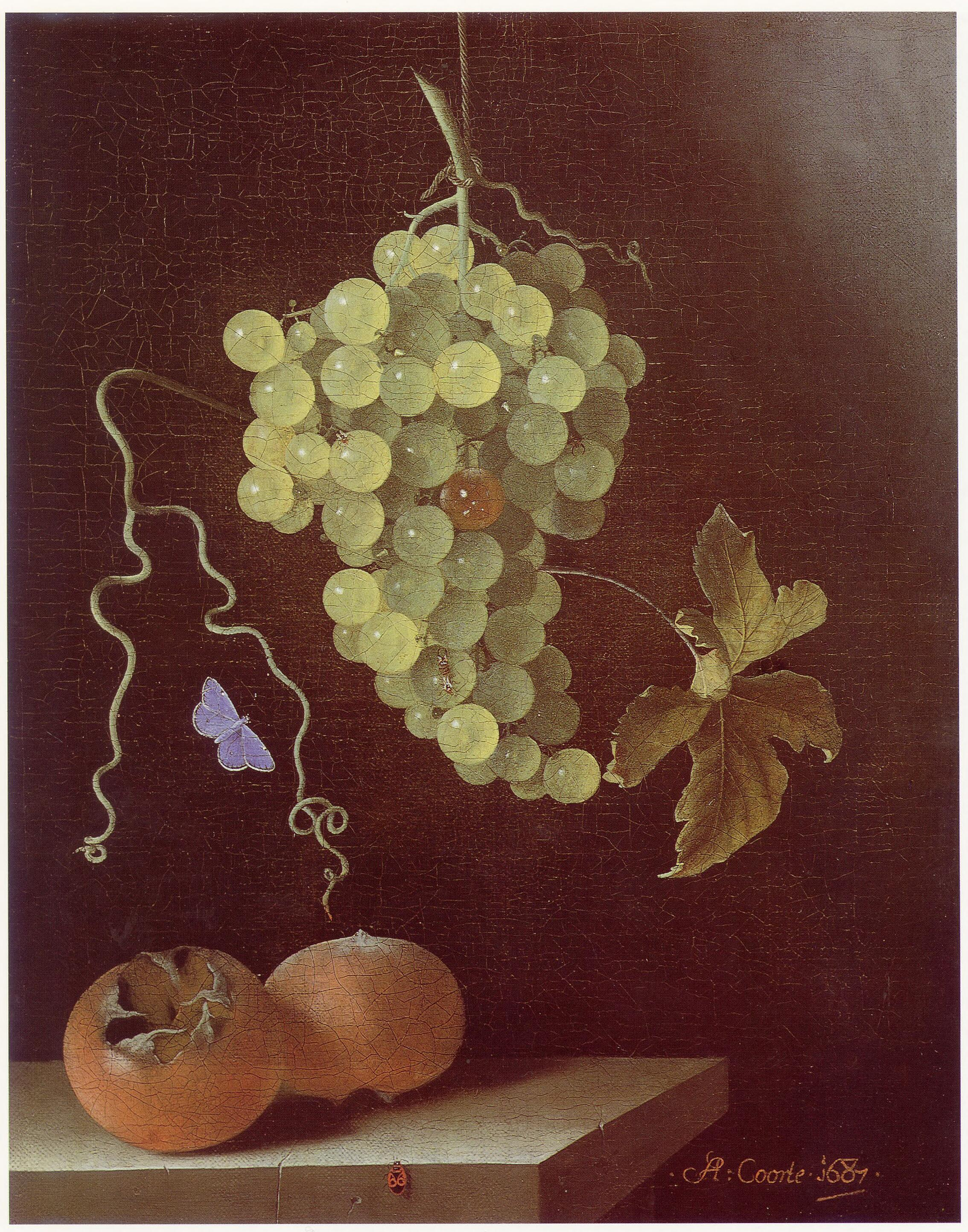 File Adriaen Coorte Still Life With Hanging Bunch Of
