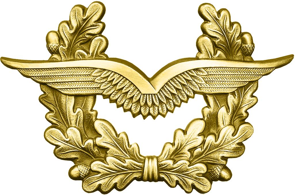 BW Schirmmütze Luftwaffe Gold.png