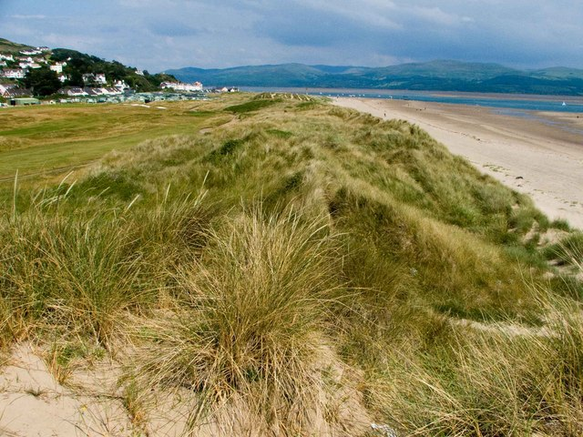 Dunes, Aberdovey - geograph.org.uk - 1384027
